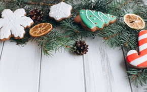 Picture COOKIES, CITRUS, NEW YEAR, HOLIDAY, FIR-TREE BRANCHES, TREATS