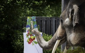 Picture paint, elephant, brush, trunk, easel
