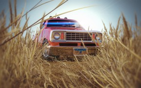 Picture grass, car, Country Side