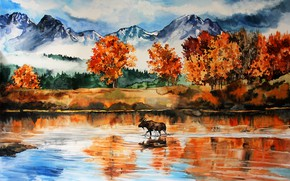 Picture forest, mountains, nature, river, moose