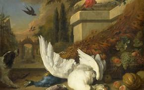 Picture animals, oil, picture, canvas, Jan Baptist Venix, Dog Dead Goose and Peacock