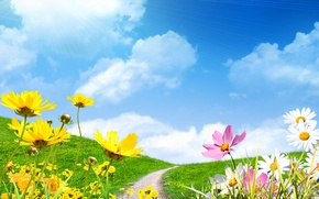 Wallpaper spring, the sky, flowers save, field, chamomile, spring, the sun