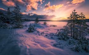 Picture snow, Norway, Norway, Ringerike