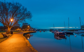 Picture trees, lights, river, England, yachts, the evening, lights, benches, promenade, Bournemouth, Southbourne