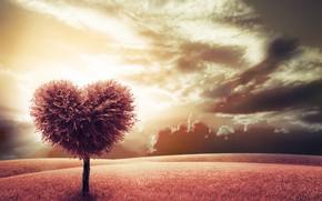 Picture tree, heart, meadow