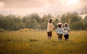 Picture field, summer, clouds, nature, children, childhood, mood, boy, village, meadow, friendship, three, three, boys, former, …