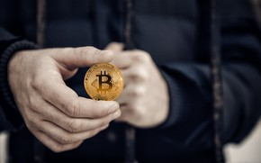 Picture money, hand, bitcoin