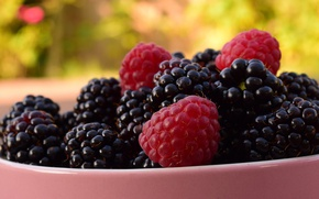 Picture summer, macro, nature, berries, raspberry, background, food, Cup, bowl, a lot, BlackBerry, juicy, delicious, blurred, …