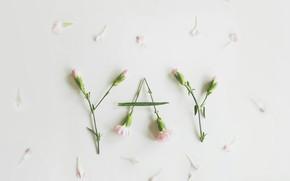 Picture flowers, the inscription, petals
