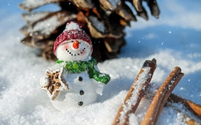 Picture winter, snow, pose, smile, holiday, hat, toy, new year, Christmas, scarf, snowman, cinnamon, bump, figure, …