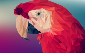 Picture red, triangles, parrot