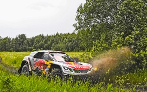 Picture Water, Nature, Sport, Speed, Dirt, Peugeot, Russia, Rally, SUV, Rally, 100, DKR, 2017, 3008, Silk …