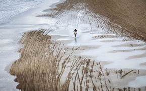 Picture beach, nature, motorcycle