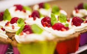 Picture raspberry, cream, dessert, cakes, sweet, cupcakes, cream, dessert, raspberry, cupcakes
