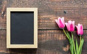 Wallpaper flowers, frame, tulips, love, March 8, wood, pink, romantic, tulips, pink tulips