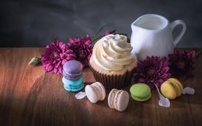 Picture flowers, colorful, dessert, flowers, cakes, sweet, sweet, cupcake, dessert, macaroon, french, macaron, cupcake, macaroon