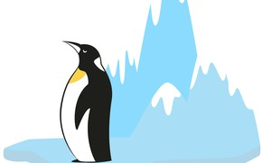Picture background, penguin, floe