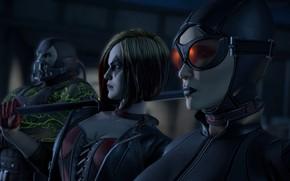 Picture mask, game, catwoman, mask, DC Comics, Bane, Harley Quinn, uniform, squad, Batman - The Telltale ...