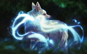 Picture nature, wolf, fantasy, by defineDEAD