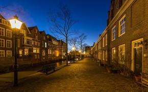 Picture street, the evening, lights, Netherlands, Holland, Dordrecht, Dordrecht