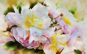 Picture white, flower, leaves, flowers, pink, figure, graphics, treatment, picture, petals, art, bright, painting, buds, easy, …