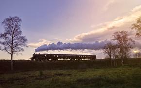 Wallpaper train, cars, nature, smoke