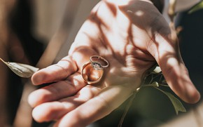 Picture love, hand, ring, pair, engagement