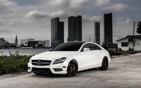 Picture Mercedes, wheels, Before, CLS550, Garde