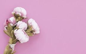 Wallpaper flowers, background, bouquet, Peonies