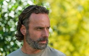 Picture beard, Zombies, The Walking Dead, Rick Grimes, The walking dead, Rick Grimes