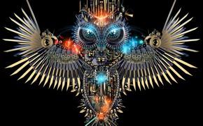 Picture background, owl, bird, mechanism