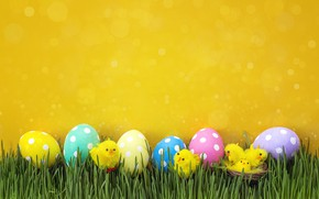 Picture grass, chickens, spring, Easter, wood, spring, Easter, eggs, decoration, Happy, the painted eggs