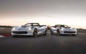 Picture car, Corvette, Chevrolet, logo, Chevrolet Corvette, asphalt, Chevrolet Corvette Carbon 65 Edition Model, Chevrolet Corvette …