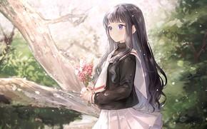 Picture nature, art, girl, Card Captor Sakura