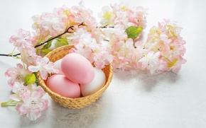 Wallpaper Easter, Easter, eggs, Happy, spring, flowers, flowers