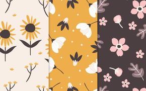 Picture flowers, background, texture, patterns, flowers, petals