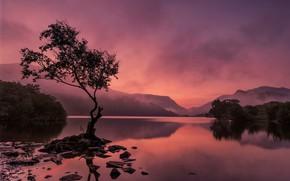 Picture mountains, lake, Wales, Snowdonia, Llyn Padarn