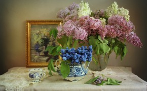Picture flowers, branches, picture, Cup, vase, lilac, Muscari, swipe