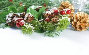Picture berries, new year, bumps, fir-tree branches