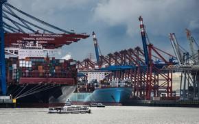 Picture ship, crane, Germany, port, docks, Hamburg