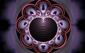 Wallpaper flower, fractal, pattern, color