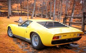 Picture Auto, Yellow, Lamborghini, Autumn, Retro, Machine, 1969, Car, Supercar, Miura, Supercar, Lamborghini Miura, Italian, Body, …
