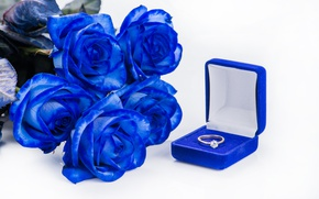 Picture holiday, roses, ring, blue, love, rose, wedding, diamond