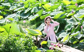 Picture summer, girl, Lotus