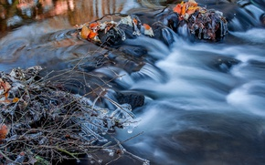 Picture autumn, water, branches, nature, river, stones, for, ice, icicles