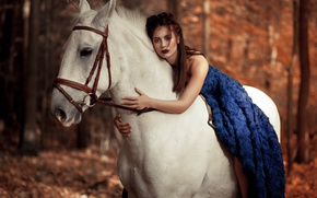 Picture look, girl, mood, horse, horse, dress, bokeh