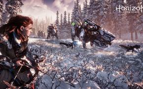 Picture PS4, Horizon Zero Dawn, Eloy