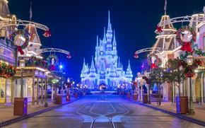 Picture Home, Lights, Night, Castle, Park, Disneyland