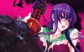 Picture blood, anime, busujima saeko, hotd