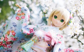 Picture toy, Doll, outfit